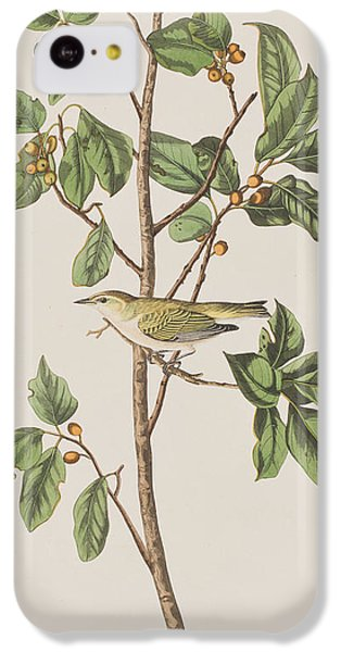 Tennessee Warbler IPhone 5c Case