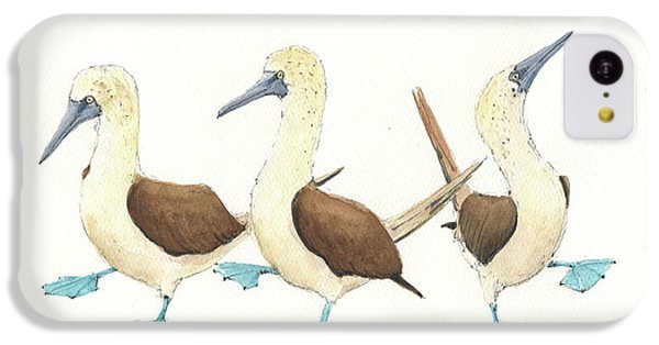 Three Blue Footed Boobies IPhone 5c Case by Juan Bosco