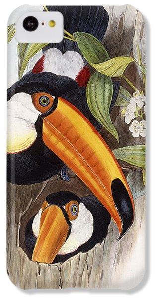 Toucan IPhone 5c Case