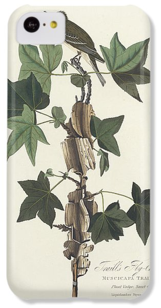 Flycatcher iPhone 5c Case - Traill's Flycatcher by John James Audubon
