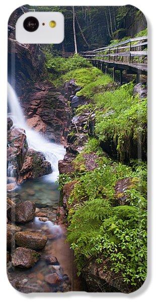 Waterfall  IPhone 5c Case