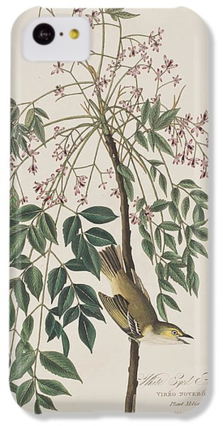 Flycatcher iPhone 5c Case - White-eyed Flycatcher by John James Audubon