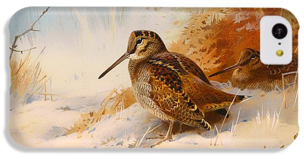 Woodcock iPhone 5c Case - Winter Woodcock by Mountain Dreams