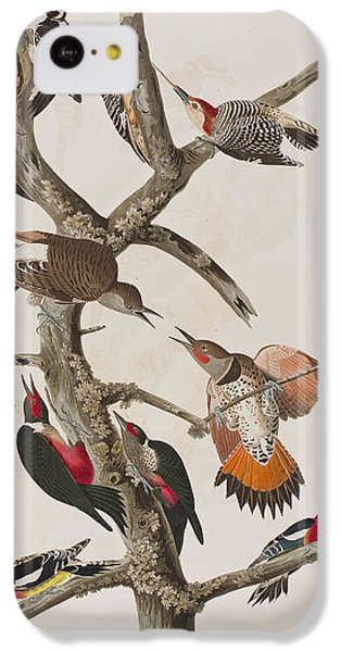 Woodpecker iPhone 5c Case - Woodpeckers by John James Audubon