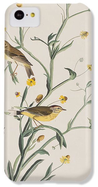Yellow Red-poll Warbler IPhone 5c Case by John James Audubon