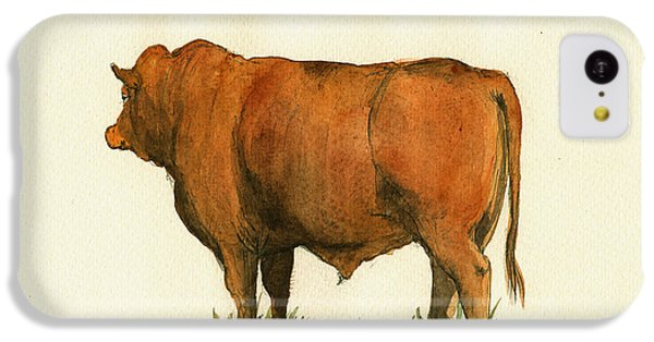 Zebu Cattle Art Painting IPhone 5c Case