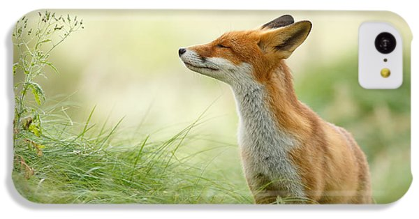 Zen Fox Series - Zen Fox IPhone 5c Case