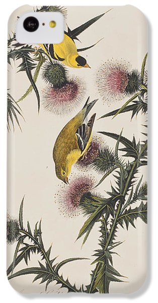 American Goldfinch IPhone 5c Case by John James Audubon