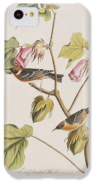 Bay Breasted Warbler IPhone 5c Case