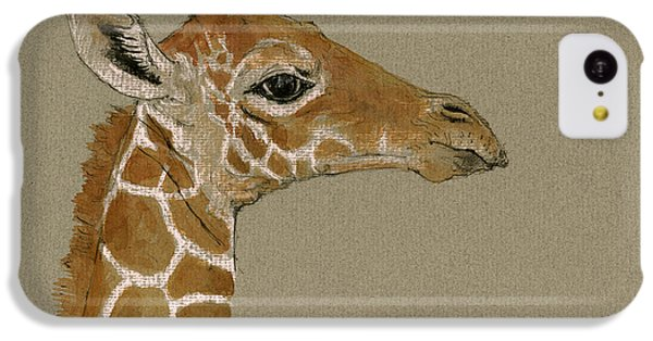 Giraffe Head Study  IPhone 5c Case by Juan  Bosco
