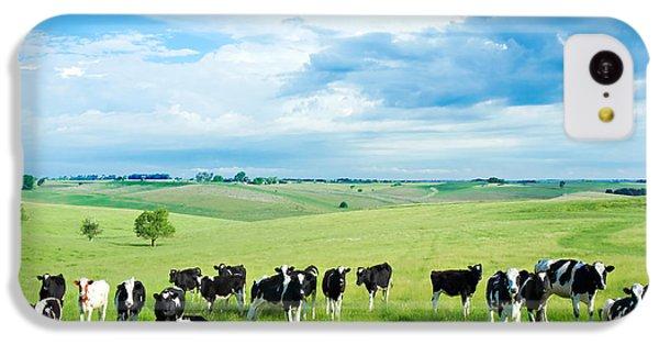 Cow iPhone 5c Case - Happy Cows by Todd Klassy