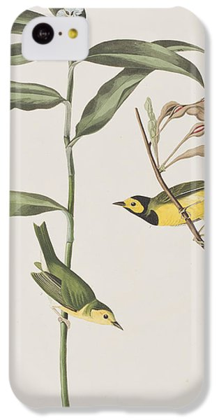 Hooded Warbler  IPhone 5c Case