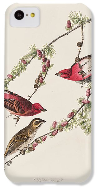 Purple Finch IPhone 5c Case by John James Audubon
