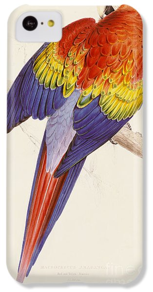 Red And Yellow Macaw IPhone 5c Case