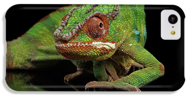 Sneaking Panther Chameleon, Reptile With Colorful Body On Black Mirror, Isolated Background IPhone 5c Case by Sergey Taran