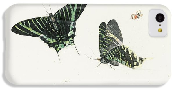 Studies Of Two Butterflies IPhone 5c Case by Anton Henstenburgh
