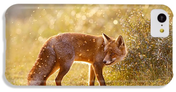 The Fox And The Fairy Dust IPhone 5c Case
