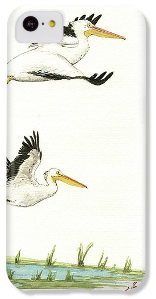 Pelican iPhone 5c Case - The Fox And The Pelicans by Juan Bosco