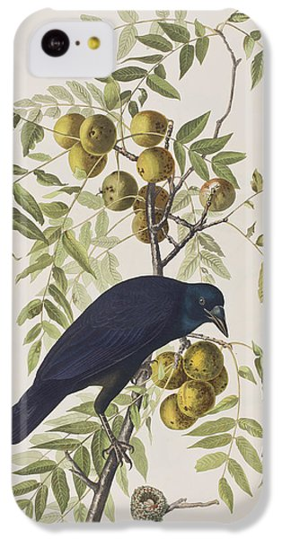 American Crow IPhone 5c Case by John James Audubon