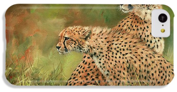 Cheetahs IPhone 5c Case