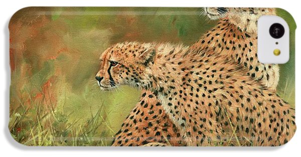 Cheetahs IPhone 5c Case by David Stribbling