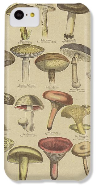 Edible And Poisonous Mushrooms IPhone 5c Case by French School