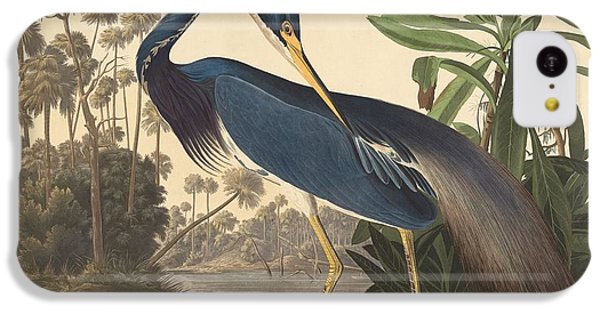 Louisiana Heron IPhone 5c Case