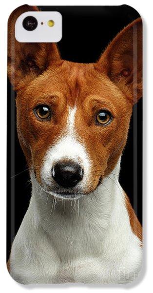 Pedigree White With Red Basenji Dog On Isolated Black Background IPhone 5c Case by Sergey Taran