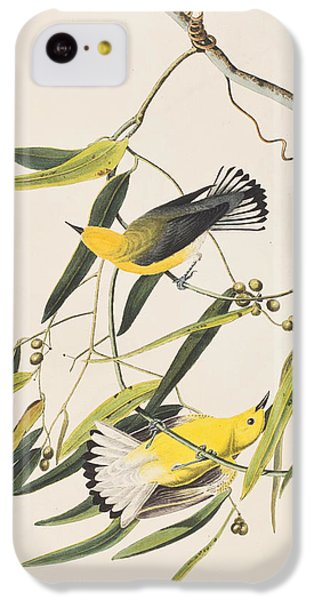 Prothonotary Warbler IPhone 5c Case