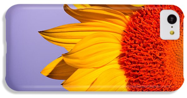 Sunflowers IPhone 5c Case by Mark Ashkenazi