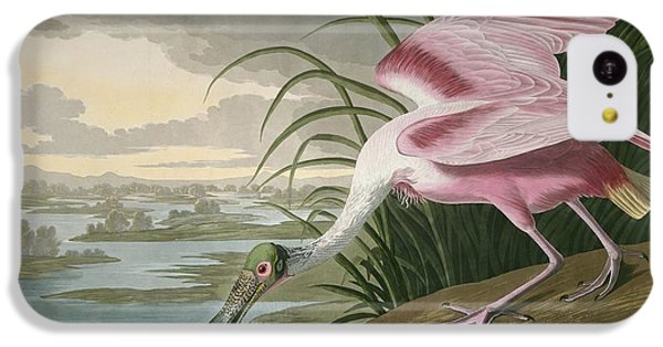 Roseate Spoonbill IPhone 5c Case by Dreyer Wildlife Print Collections