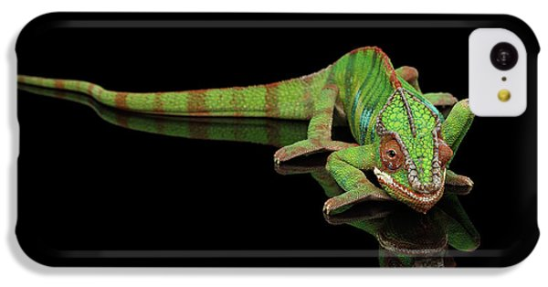 Sneaking Panther Chameleon, Reptile With Colorful Body On Black Mirror, Isolated Background IPhone 5c Case