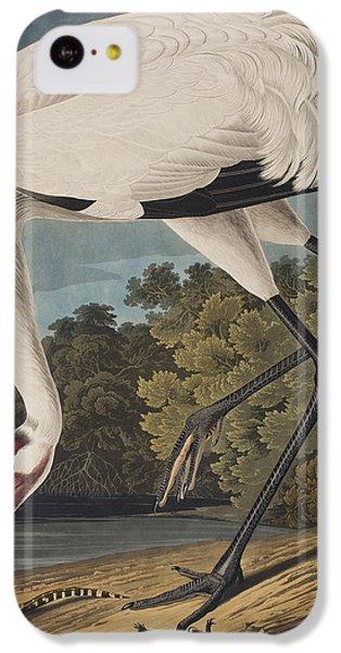Whooping Crane IPhone 5c Case by John James Audubon