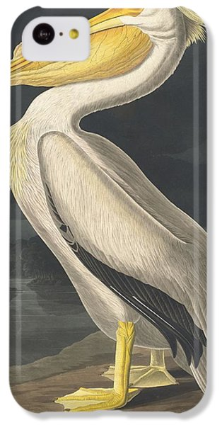 American White Pelican IPhone 5c Case by Rob Dreyer
