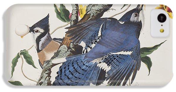 Blue Jay IPhone 5c Case by John James Audubon