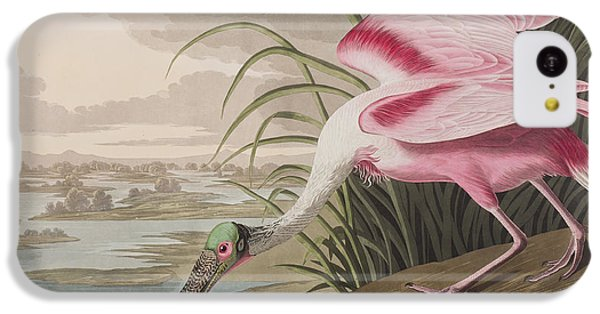 Roseate Spoonbill IPhone 5c Case by John James Audubon