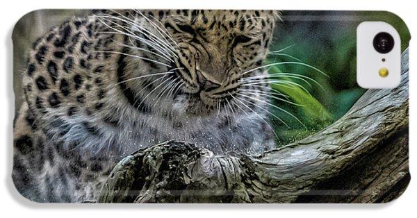 Amur Leopard IPhone 5c Case by Martin Newman