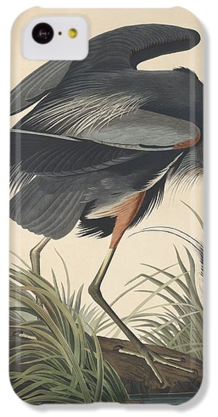 Great Blue Heron IPhone 5c Case by Anton Oreshkin