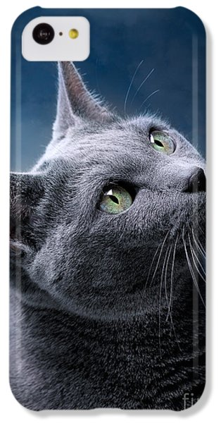 Cats iPhone 5c Case - Russian Blue Cat by Nailia Schwarz