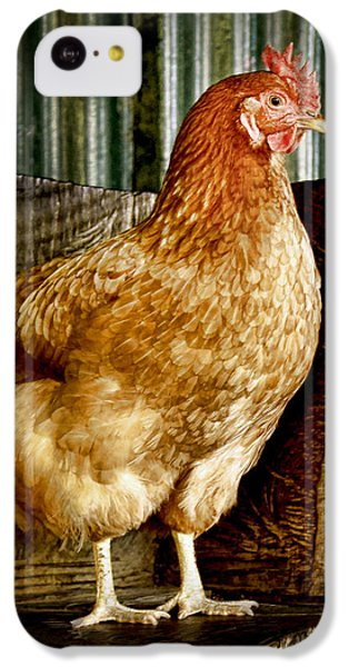 A Chicken Named Rembrandt IPhone 5c Case