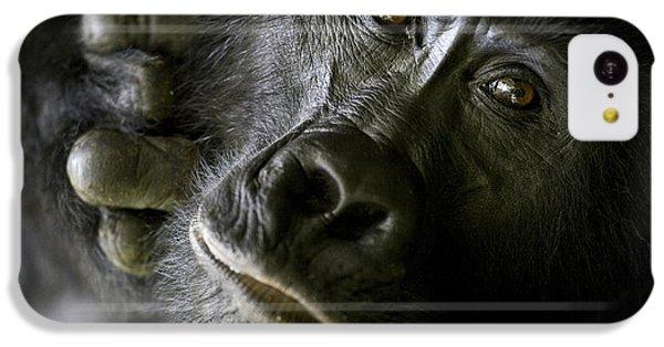 A Close Up Portrait Of A Mountain IPhone 5c Case