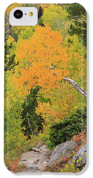 Yellow Drop IPhone 5c Case by David Chandler
