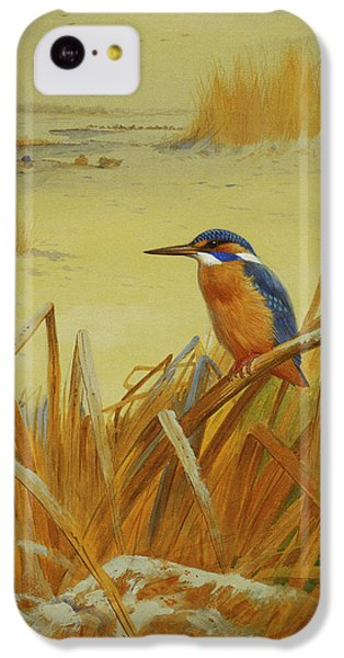A Kingfisher Amongst Reeds In Winter IPhone 5c Case