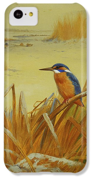 A Kingfisher Amongst Reeds In Winter IPhone 5c Case by Archibald Thorburn