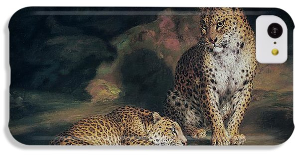 A Pair Of Leopards IPhone 5c Case by William Huggins