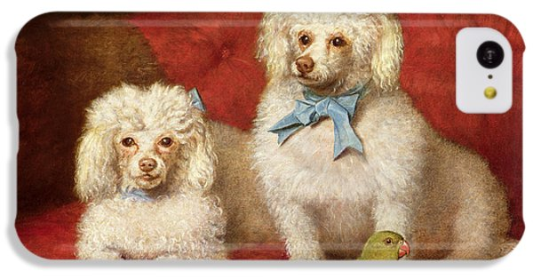 A Pair Of Poodles IPhone 5c Case