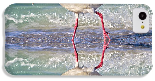 Ibis iPhone 5c Case - A Reflective Walk by Betsy Knapp