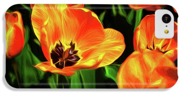 Tulip iPhone 5c Case - A Splash Of Color by Tom Mc Nemar