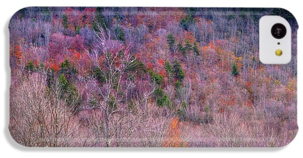 IPhone 5c Case featuring the photograph A Touch Of Autumn by David Patterson