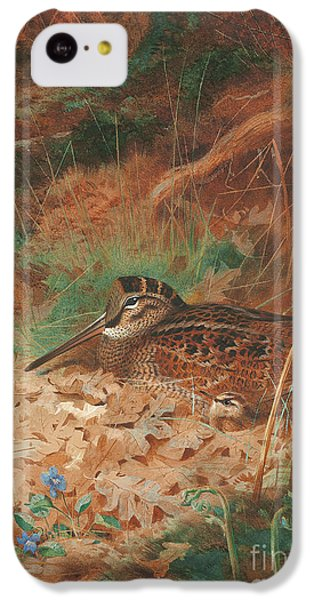 Woodcock iPhone 5c Case - A Woodcock And Chick In Undergrowth by Archibald Thorburn